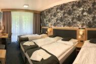 hotel-karlov-pod-pradedem-12